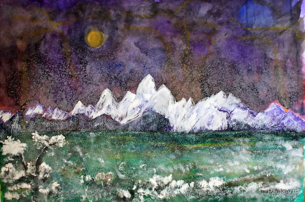 Midnight Snowfall by PaulCArts