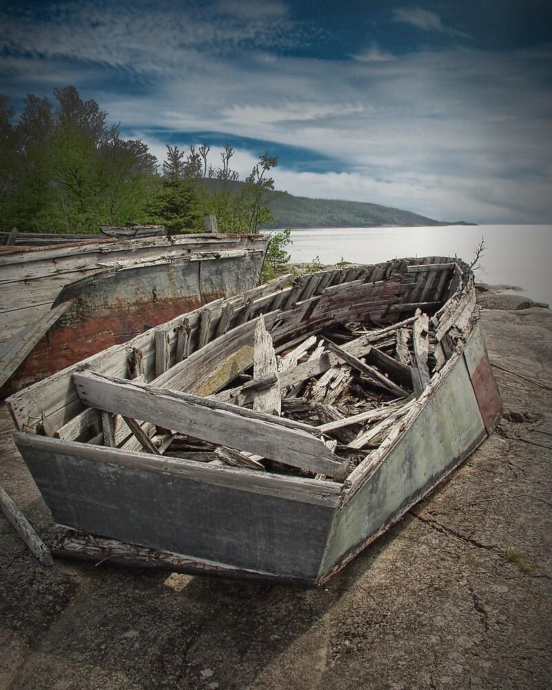Shipwreck at Neys Provincial Park  No. 1737 by Randall Nyhof