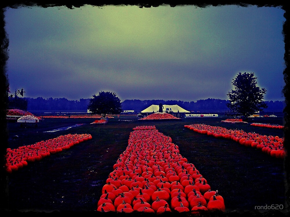 Army of pumpkins by rondo620