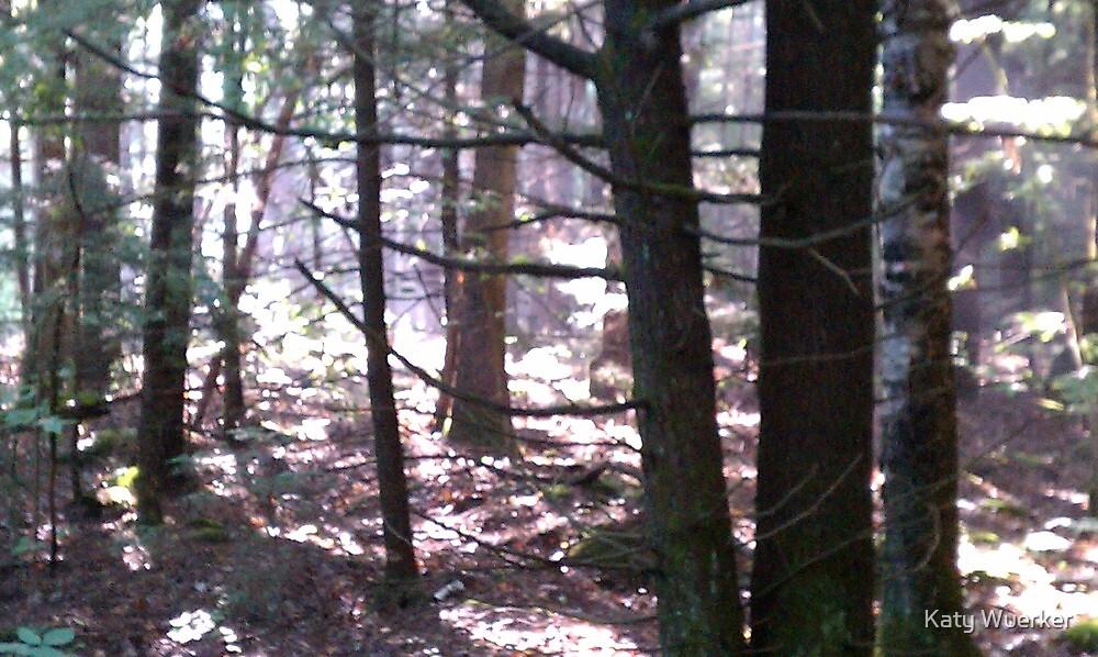 The Woods of Nottingham by Katy Wuerker