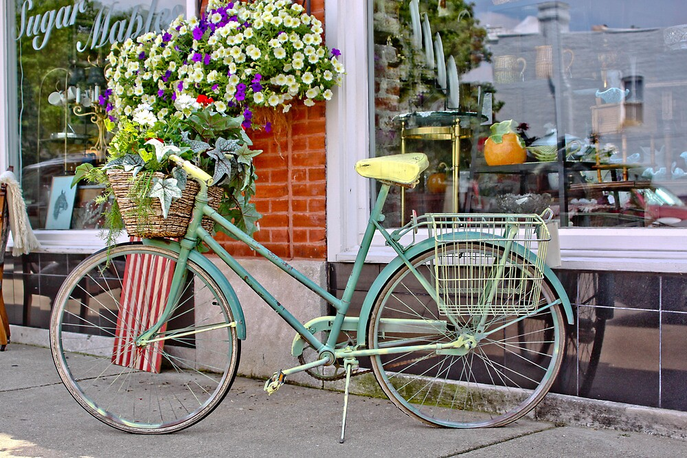 OLD BICYCLE WITH FLOWERS by Pauline Evans