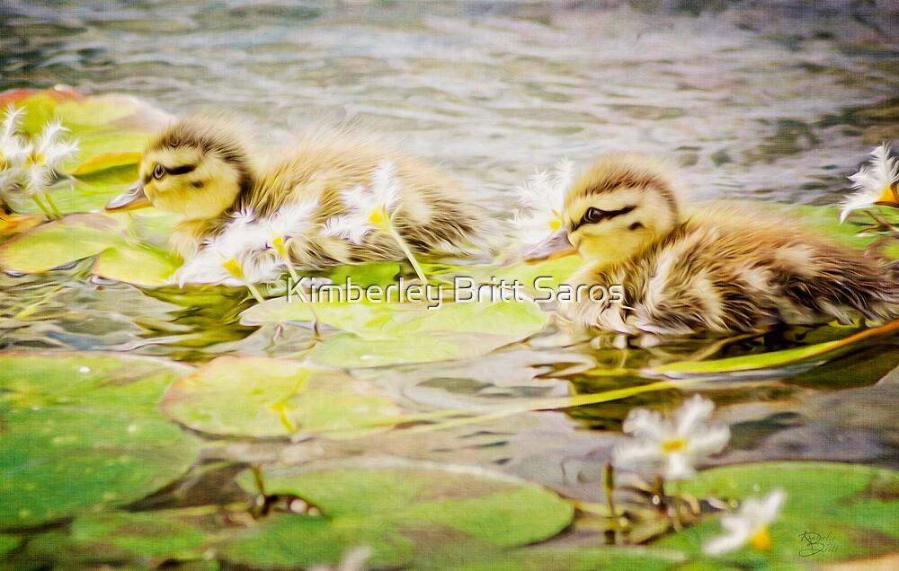 Ducklings by KBritt
