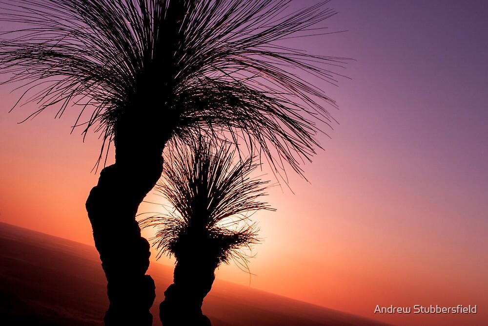 Bunya Sunset by AWS-PHOTOGRAPHY