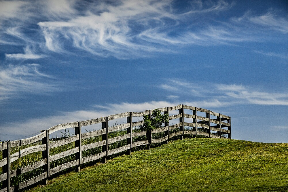 Wooden Farm Fence at the top of the Hill by Randall Nyhof