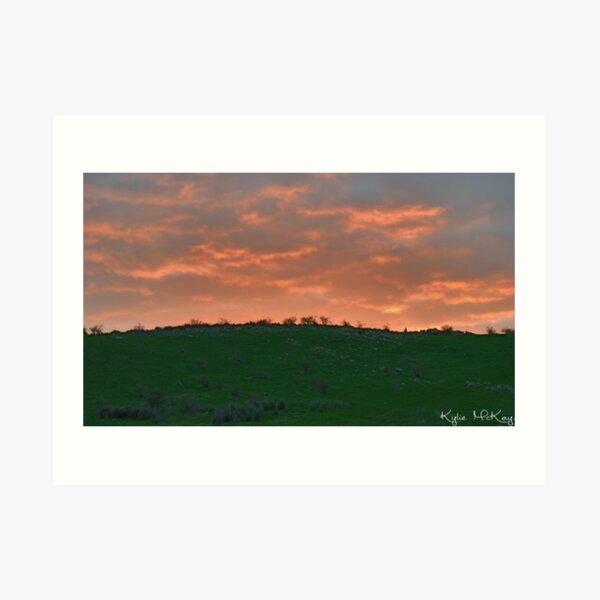 sunset roo Art Print