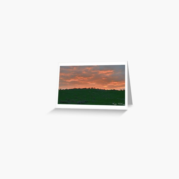 sunset roo Greeting Card