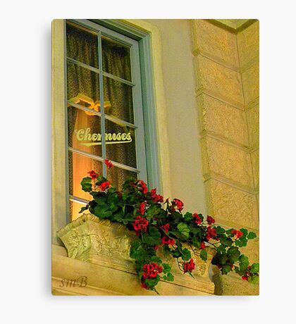 Soft French Canvas Print