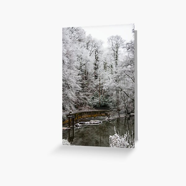 Frosty morning on the River Frome Christmas Card Greeting Card