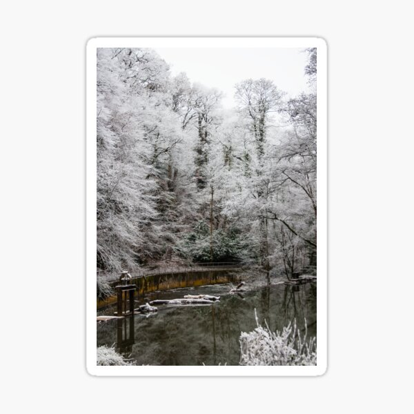 Frosty morning on the River Frome Christmas Card Sticker