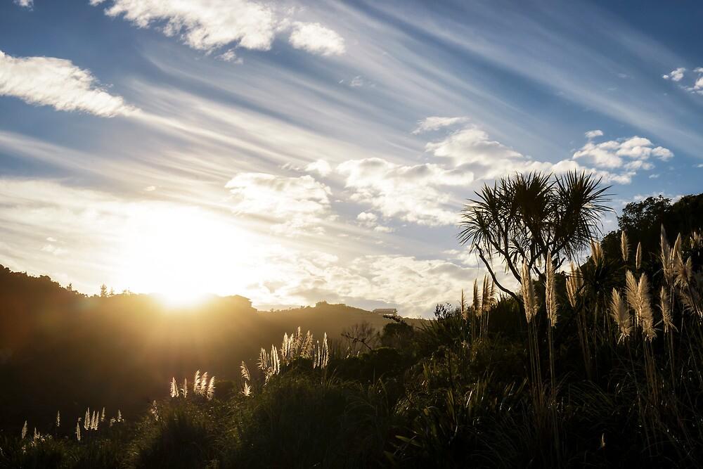 Setting sun by Kay Brocks