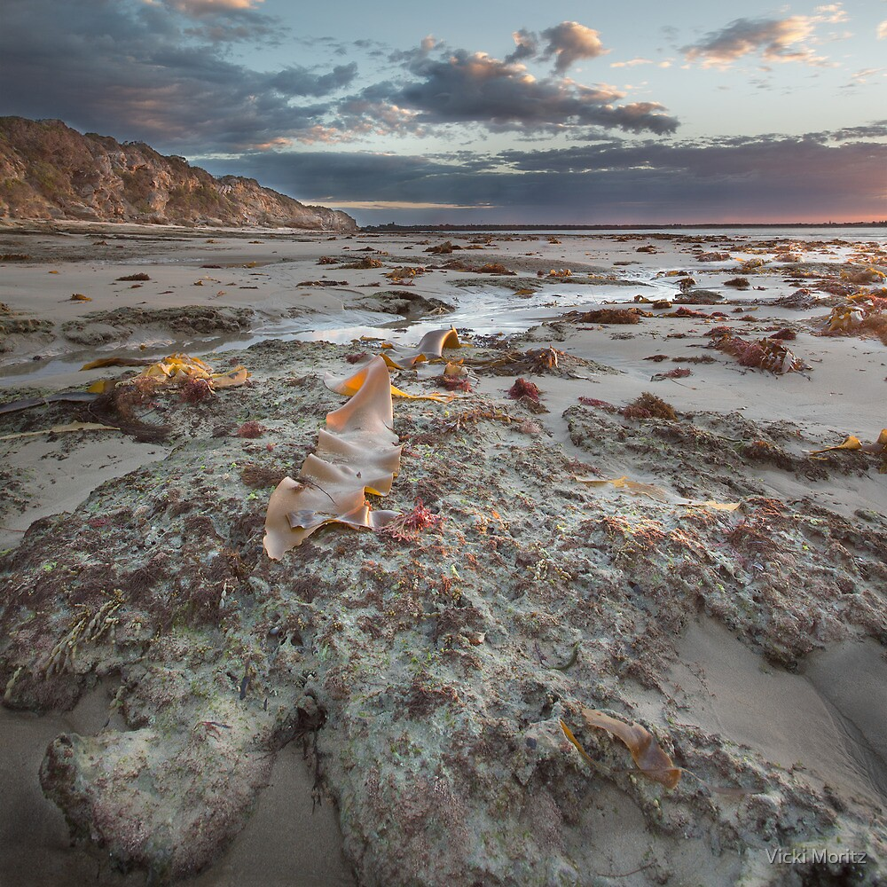 Point Lonsdale Early by Vicki Moritz