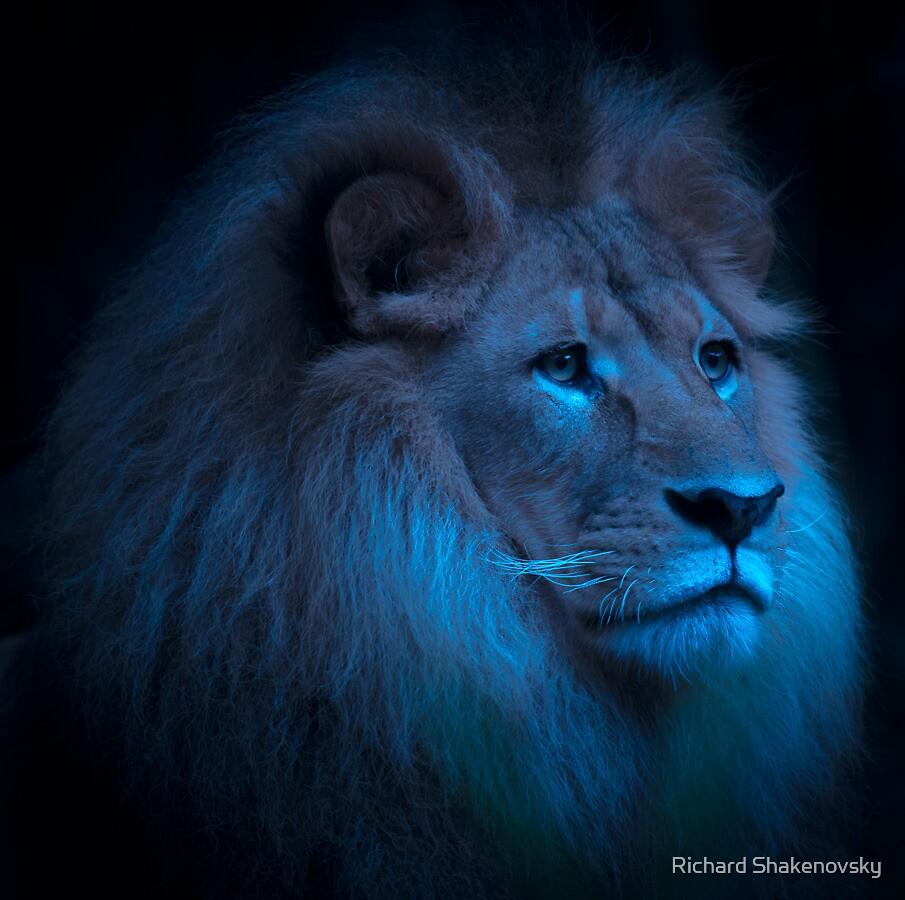 King Leo by Richard Shakenovsky