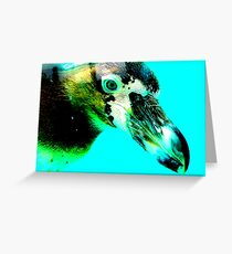 Blue Eyed Penguin Greeting Card
