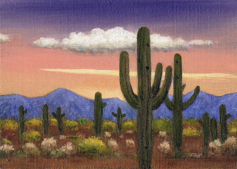 Arizona Sunset by Gordon Beck