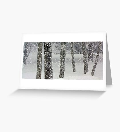 Snow-Squall -- While Walking In The Woods Greeting Card