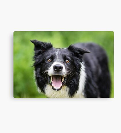 Happy Face Canvas Print