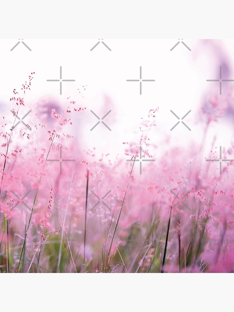 Pink summer field by ColorsHappiness