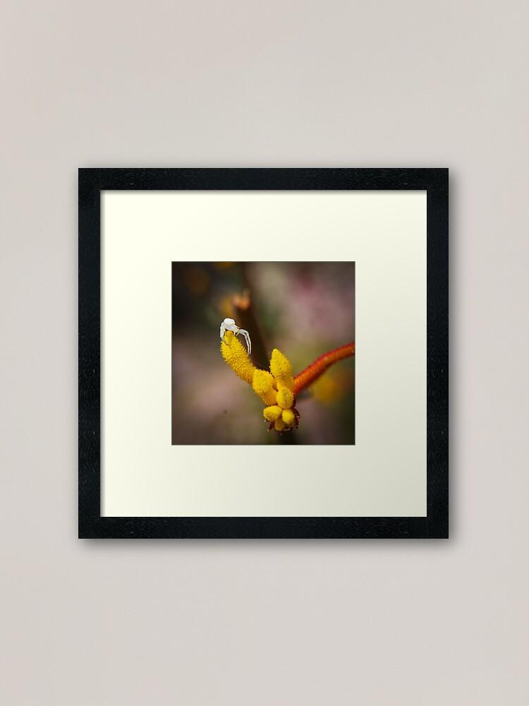 Alternate view of Incy wincy spider Framed Art Print