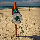 Summer Beach Life Preserver by Randall Nyhof