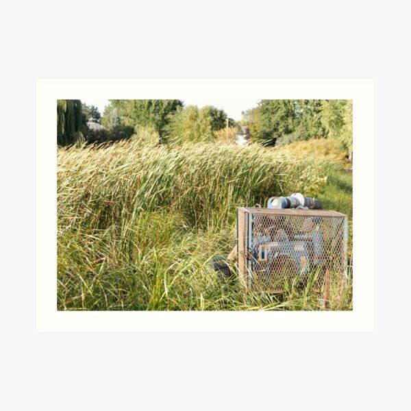 Sump Pump In The Reeds Art Print
