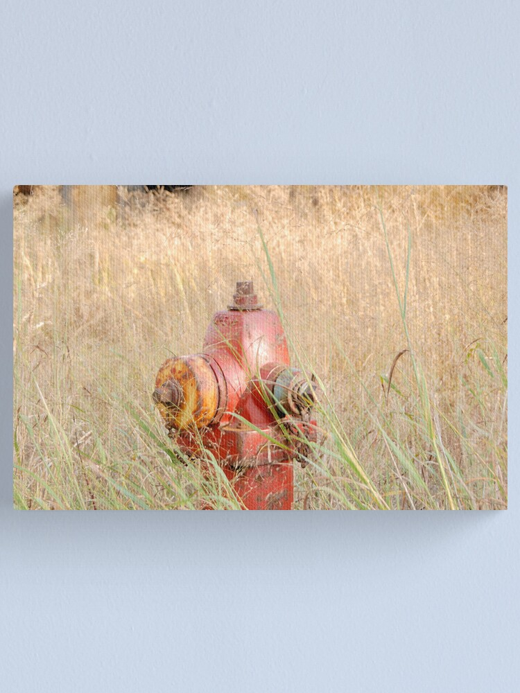Alternate view of Fire Hydrent in tall grass Canvas Print