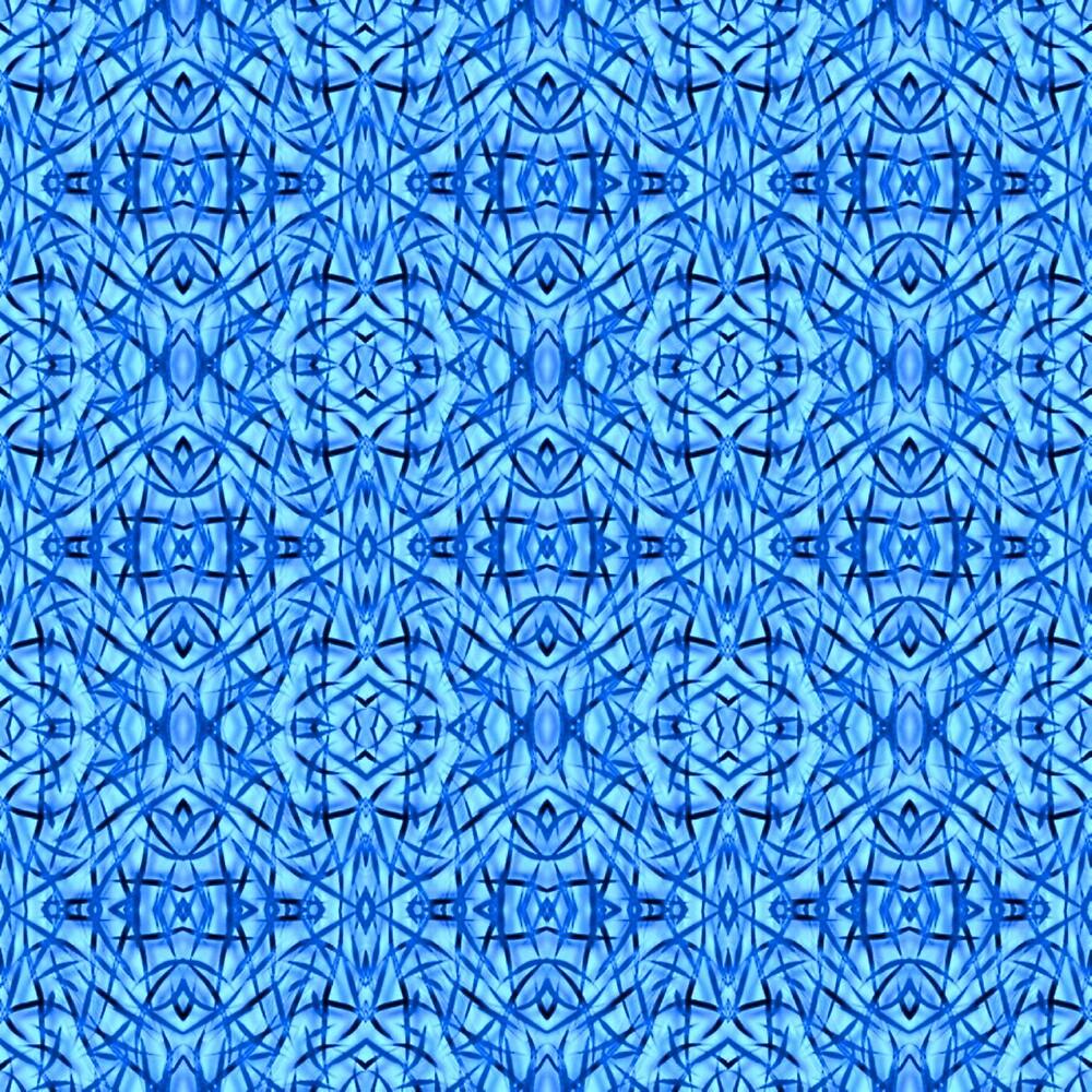 BLUE EYES by paulvolker