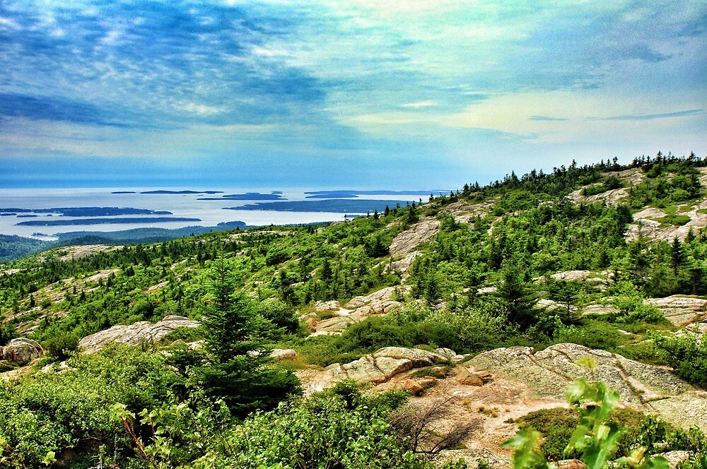 View from Cadillac Mountain, Acadia National Park, Maine, USA by fauselr