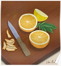 Citrus. Still Life. Digitally Painted Orange and Lemon Slices Poster