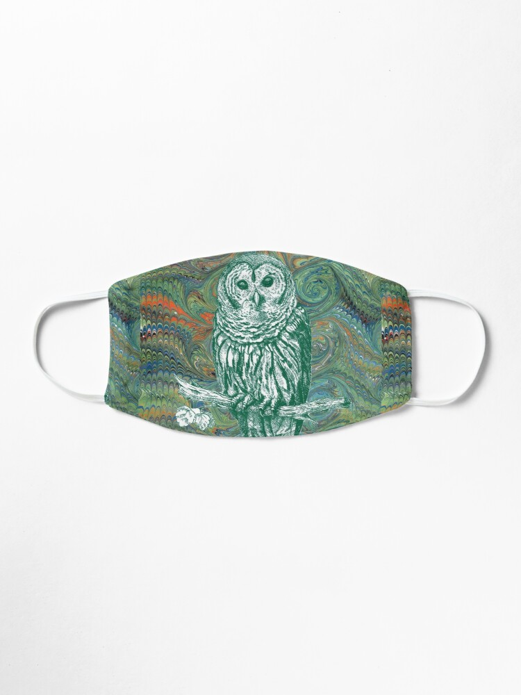 Alternate view of The Owl in the Library Mask