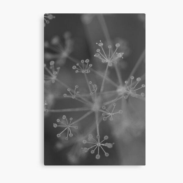 Constelation Metal Print
