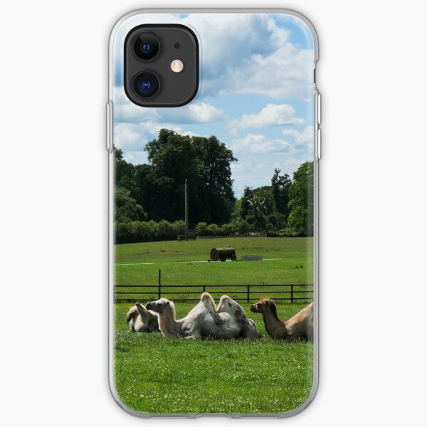 Double humped camels iPhone Soft Case