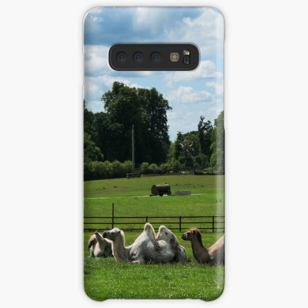 Double humped camels Samsung Galaxy Snap Case