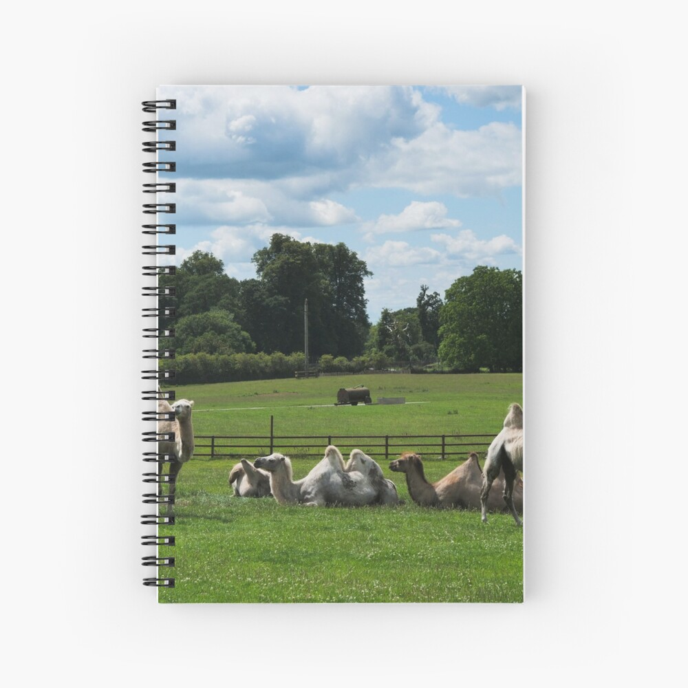 Double humped camels Spiral Notebook