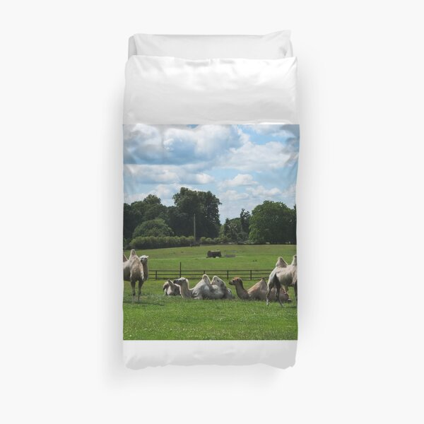 Double humped camels Duvet Cover