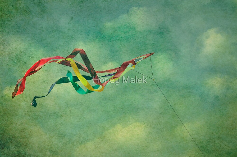 Learning To Fly by Honey Malek