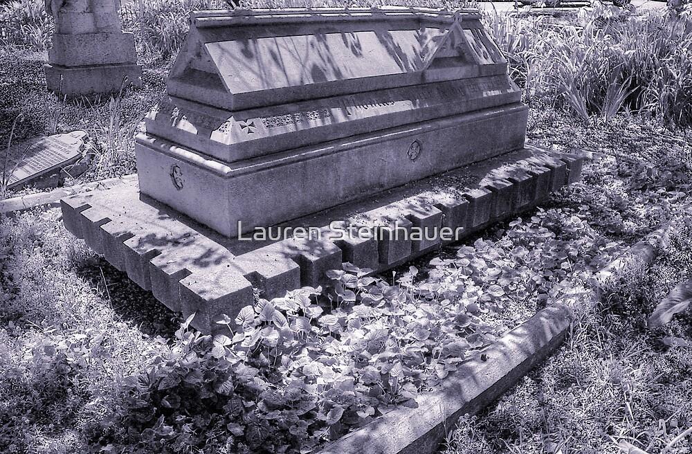 Sarcophagus III by Lauren Steinhauer