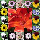 Floral Collage Featuring Orange Lily by BlueMoonRose