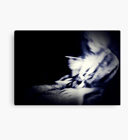 01-26-11  Out of Phase  Canvas Print