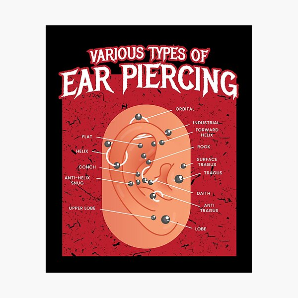 Various Types Of Ear Piercing Earring Photographic Print