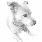 little white dog drawing by Mike Theuer