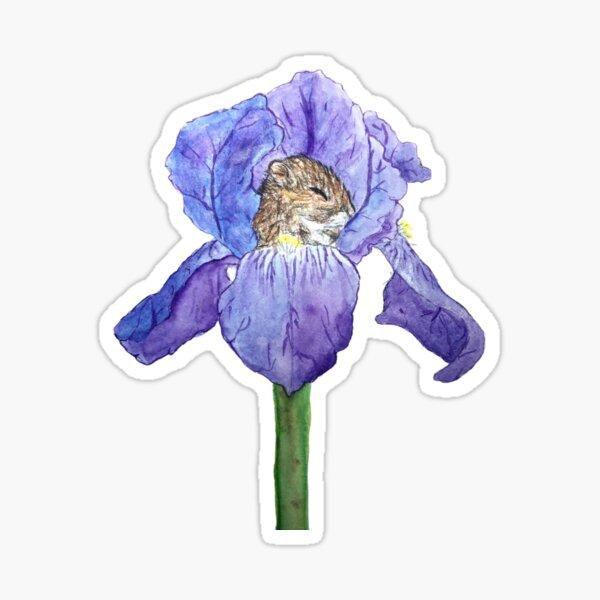 Iris mouse Sticker