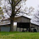 My Friends Barn by WildestArt