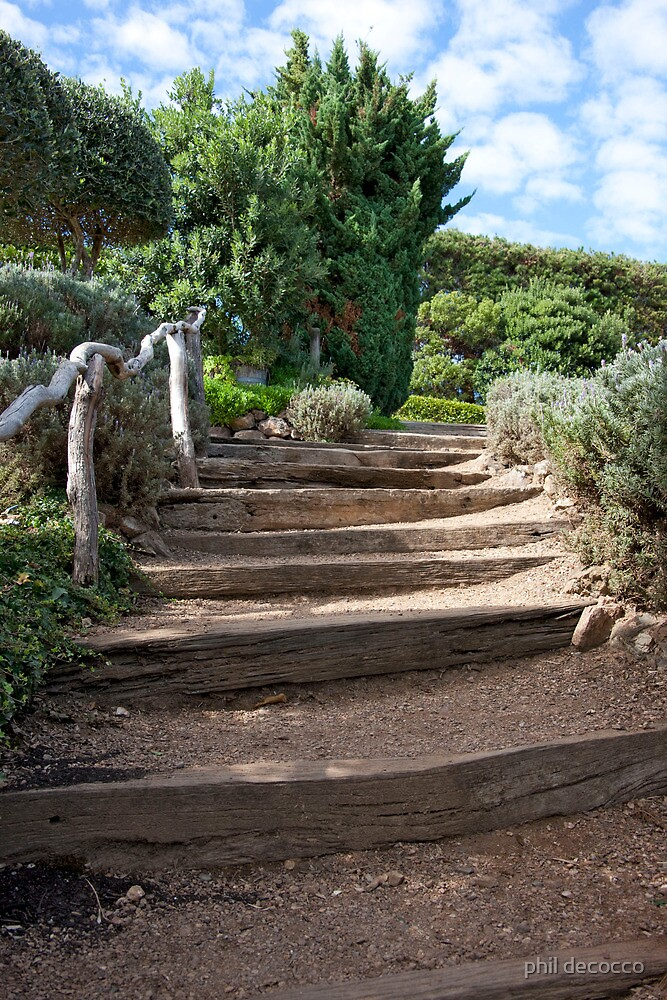 Rugged Steps by phil decocco