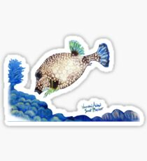 Casper - Ocean Series Tropical Fish Sticker