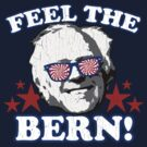 Feel the BERN! (vintage distressed look) by robotface