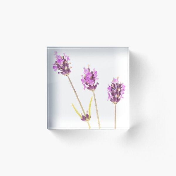 Lavender Acrylic Block