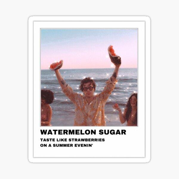 Polaroid de azúcar de sandía Harry Styles Pegatina