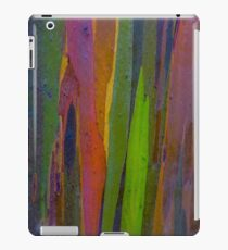 Rainbow Eucalyptus 1 iPad Case/Skin