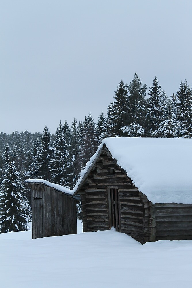 Old dairy farm in the forest. Løten, Norway. by UpNorthPhoto