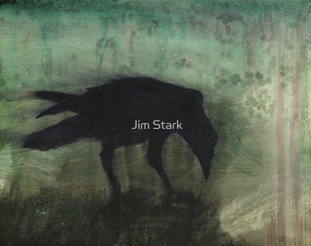 The Black Flag Of Himself by Jim Stark